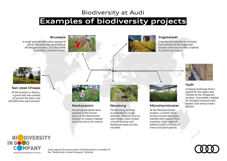 工場敷地内の17ヘクタールの土地に、自然に近い動植物の生息地を形成